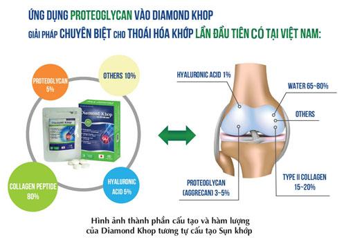 Diamond khop - Giải pháp chuyên biệt cho bệnh thoái hóa khớp - 2