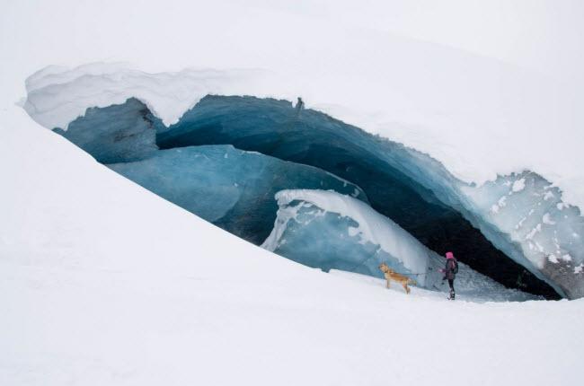 Hang động tự nhiên hình thành dưới sông băng Athabasca trong vườn quốc gia Banff, Canada.