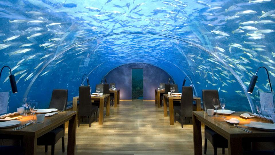 """Thử cảm giác lạ ở 10 nhà hàng """"dị"""" nhất hành tinh - 1"""