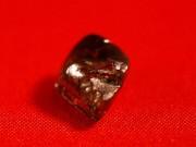 Thế giới - Mỹ: Đang tản bộ, nhặt được kim cương nâu lớn nhất 40 năm