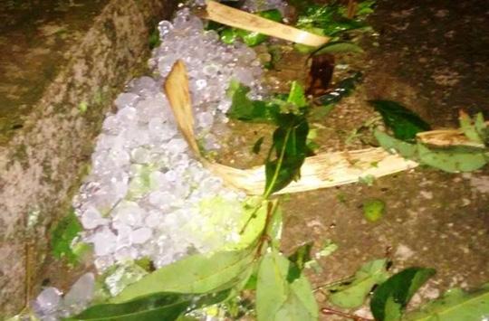 Mưa đá dày đặc hiếm thấy trút xuống Thanh Hóa - 2