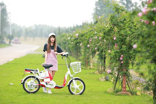 Lần đầu tiên Việt Nam có thương hiệu Việt sản xuất xe gắn động cơ hai bánh - 3