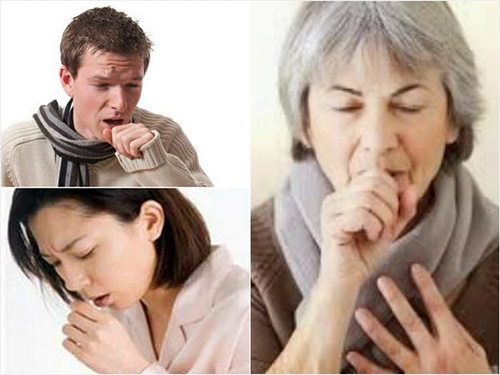 Phát hiện cây thuốc quý trong điều trị đau họng, khản tiếng, mất tiếng - 1