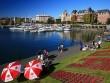 Định hướng nghề nghiệp tại Ngày hội Du học Victoria Canada