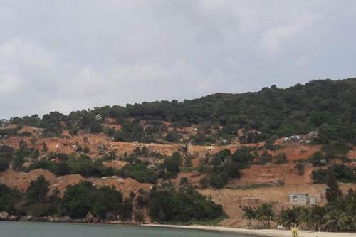 Phạt chủ đầu tư dự án đào xới bán đảo Sơn Trà 40 triệu - 2