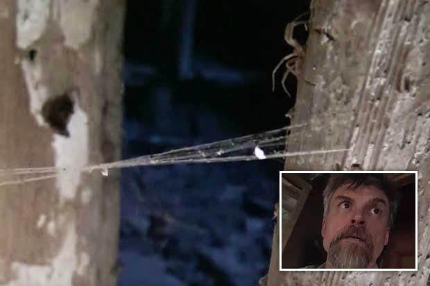 Video: Khám phá hầm 300 năm, phát hiện âm thanh đáng sợ - 1