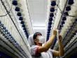 Vốn FDI Trung Quốc vào Việt Nam tăng cao