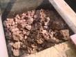 Tá hỏa phát hiện bộ hài cốt trong bể phốt
