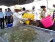 10 tỉ USD xuất khẩu tôm: Thách thức lớn