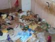 """Giải cứu 2 em bé, 31 con vật trong căn nhà """"bẩn nhất thế giới"""""""