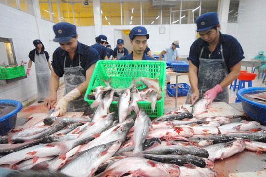 Cá tgiải thu: Tránh phụ thuộc Trung Quốc - 1