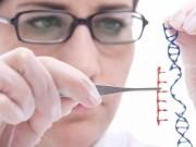 Tại sao nên dùng hợp chất Fucoidan cho người mắc ung thư?
