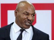 Hết hồn Mike Tyson làm nghề lạ: Trồng cần sa, kiếm triệu đô