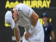 Australian Open 2018 mất  hổ tướng : Murray rút lui trong đau đớn