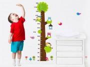 Vitamin K2 -  Người vận chuyển  âm thầm giúp con đạt chiều cao mơ ước