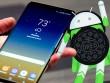 Samsung đã hoàn tất Android 8 Oreo cho Galaxy S8 và S8+