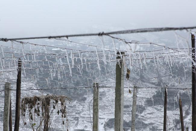 Không khí lạnh tràn về, Mẫu Sơn có thể xuống -1 độ C - 1