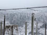 Tin tức trong ngày - Không khí lạnh tràn về, Mẫu Sơn có thể xuống -1 độ C