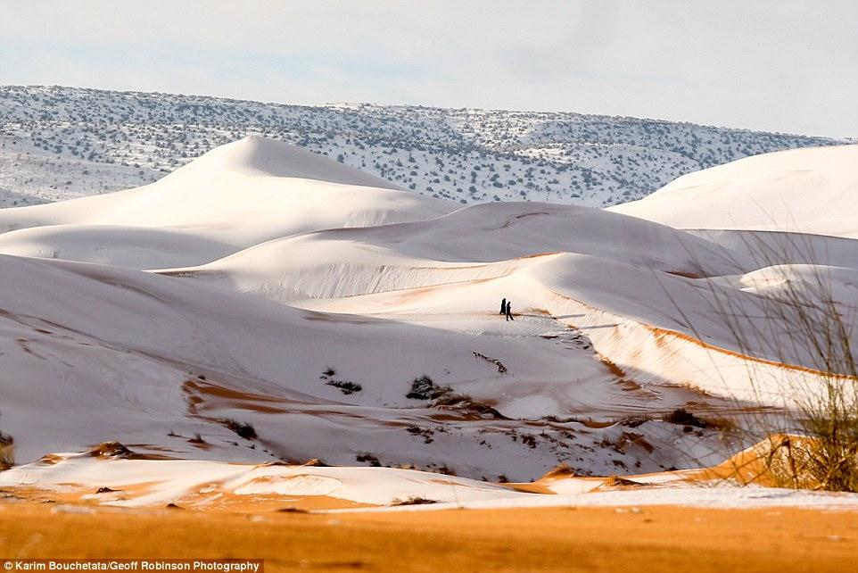 Rét kỷ lục phủ trắng sa mạc Sahara dưới lớp tuyết dày 40cm - 3