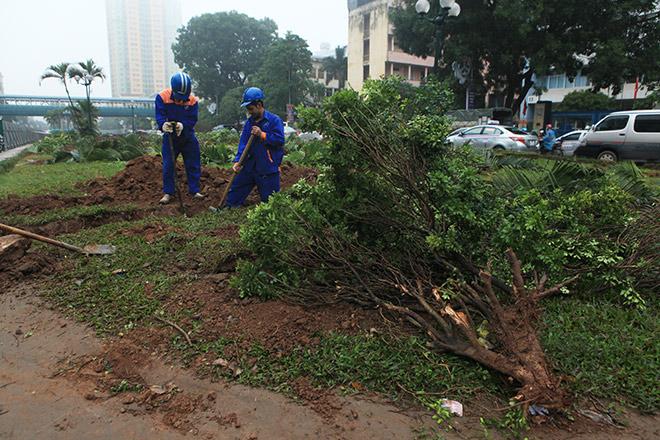 Bị xén 3/4 thảm cỏ, đường đẹp nhất Việt Nam có giữ được danh hiệu? - 4