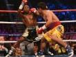 Lịch thi đấu boxing mới nhất năm 2018