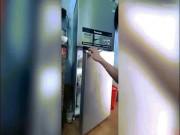 Báo Tây viết về 3 chú chó nằm ngủ trong tủ lạnh ở VN