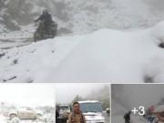 Tin tức trong ngày - Thực hư thông tin tuyết rơi trắng đỉnh núi ở Nghệ An