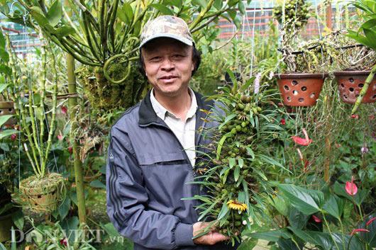 """""""Lạc"""" vào vườn phong lan đặc hữu độc, lạ của lão nông Đà Lạt - 5"""