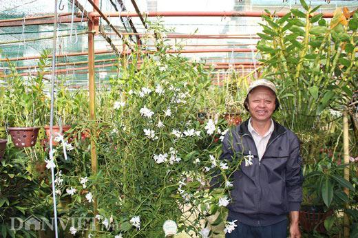 """""""Lạc"""" vào vườn phong lan đặc hữu độc, lạ của lão nông Đà Lạt - 8"""