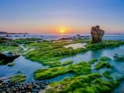 Chiêm ngưỡng rêu phủ kín bãi đá nhiều màu nhất Việt Nam