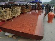 Sập gỗ Cẩm Lai được cho là có tuổi đời nghìn năm xuất hiện ở Hà Nội