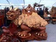 """Sở hữu gỗ lũa quý hình  """" rùa hóa rồng """" , chủ nhân ra giá 600 triệu"""