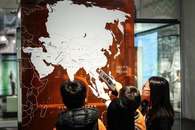 Ngắm loạt cổ vật cực quý của thế giới lần đầu xuất hiện tại Việt Nam - 17