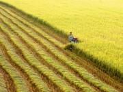 Trung bình mỗi năm Việt Nam có thêm 35 nghìn doanh nghiệp