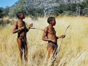 Dùng chất cực độc của thổ dân làm… thuốc ngừa thai