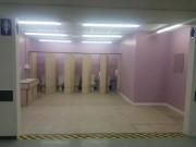 Sốc với toilet nữ  tơ hơ  ở trường học Anh