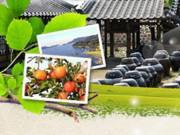 Cơ hội trải nghiệm sản phẩm táo tươi vùng Yesan