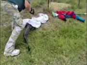 Thấy cá sấu trong sân, người đàn ông Mỹ làm liều