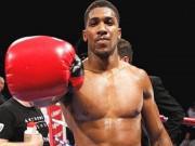 Tin thể thao HOT 23/1:  Quyền vương boxing  tính làm quan