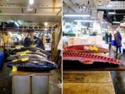 Ghé thăm khu chợ bán cá ngừ giá hàng triệu USD