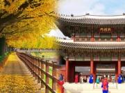 Tất tần tật những điều cần biết trước khi ghé thăm quê hương của HLV Park Hang Seo