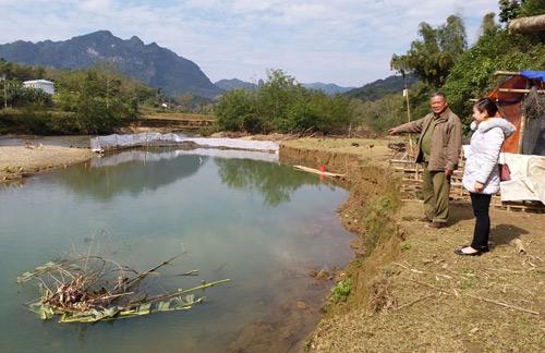 Độc đáo: Ngăn sông...nuôi cá, khấm khá mấy hồi - 1