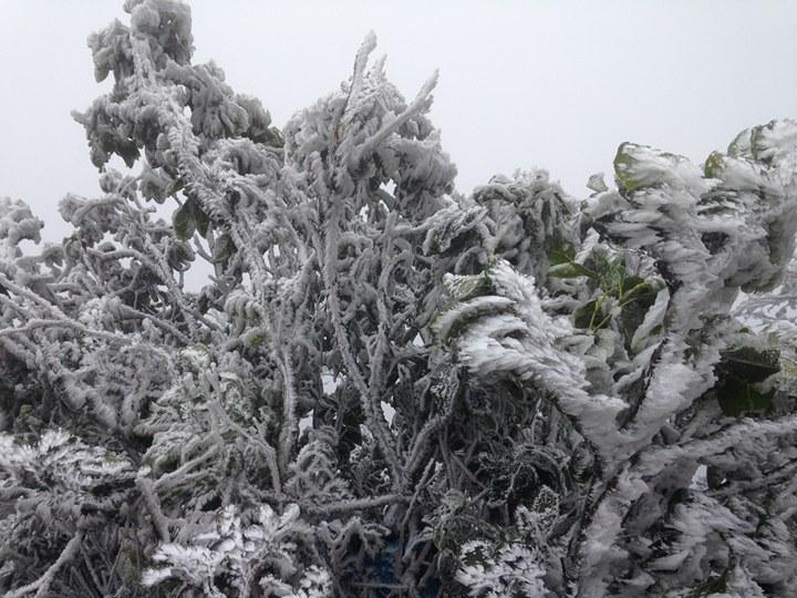 Rét khủng khiếp, miền Bắc vẫn tiếp tục hứng không khí lạnh - 1