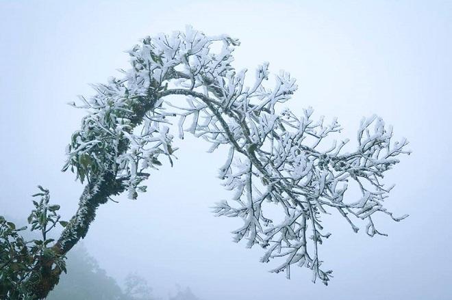 Không khí lạnh tăng cường, miền Bắc chìm trong rét đậm, rét hại - 1