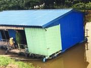 Chuyện động trời trong 1 trang trại ở Hưng Yên