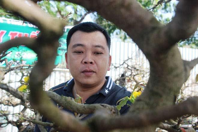 Mai bonsai cổ thụ giá bạc triệu ùn ùn xuống phố tìm đại gia dịp Tết - 2