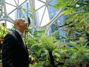 """Tỷ phú giàu nhất TG chơi trội: Chi 4 tỷ USD mang cả  """" rừng mưa """"  vào nơi làm việc"""
