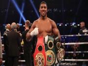 """Boxing: Quyền vương Joshua điên cuồng tập luyện, đấu  """" kẻ thù thế kỷ """""""