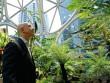 """Tỷ phú giàu nhất TG chơi trội: Chi 4 tỷ USD mang cả """"rừng mưa"""" vào nơi làm việc"""