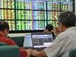 Thị trường chứng khoán quay đầu vượt mốc 1000 điểm